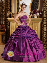 Los Reyes Acaquilpan Mexico Pick-ups Simple Purple 2013 Quinceanera Dress Strapless Taffeta Beaded Appliques Style QDZY064FOR