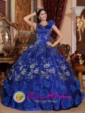 Morelia Mexico V-neck Satin Refined Appliques Decorate Exquisite Blue Quinceanera Dresses For Spring Style QDZY746FOR