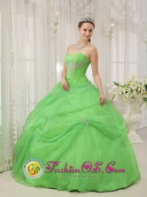 Ocosingo Mexico Customize Quinceanera Dress For Quinceanera With Spring Green Sweetheart neckline Floor-length Style QDZY379FOR