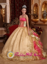 Zapopan Mexico Embroidery Decorate Bodice Champagne Organza and Floor-length Quinceanera Dress Style QDZY429FOR