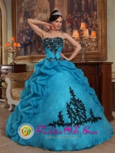2013 Custom Made Strapless Blue Pick-ups Quinceanera Gowns With Organza and Taffeta In Horqueta Paraguay Style QDZY390FOR
