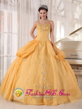 2013 Fall Quinceanera Dress With Spaghetti Straps Gold Appliques Taffeta and Organza Ball Gown In Alberdi Paraguay Style PDZY580FOR