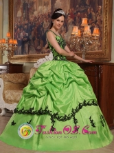 2013 Popular Appliques Decorate Bodice Spring Green Quinceanera Dress For Sweet Style Straps Taffeta In Obligado Paraguay Style QDZY396FOR