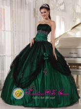 2013 Wholesale Green Quinceanera Dress With Strapless Tulle and Taffeta Beaded hand flower ball gown In Mbocayaty Paraguay  Style PDZY518FOR
