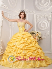 Brand New Yellow  Wholesale 2013 Quinceanera Dress Strapless Court Train Taffeta Appliques and Beading In Guazu-Cua Paraguay Style QDZY008FOR