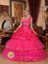 Custom Made One Shoulder Organza Romantic Hot Pink Beading and Pick-ups Quinceanera Dresses In Autumn In San Juan del Parana Paraguay Style QDZY755FOR