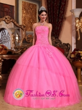 Customize Rose Pink Exquisite Appliques Beaded Quinceanera Dress With Strapless Tulle in Fall In Laureles Paraguay Style QDZY617FOR