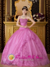 Customized Brand New For Quinceanera Dress With Rose Pink Sweetheart Exquisite Appliques In Natalio Paraguay Style QDZY080FOR