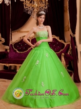 Customized Spring  Green  Organza Wholesale Appliques Decorate  Ruching Princess Quinceanera Dress In Tebicuarymi Paraguay Style QDZY079FOR