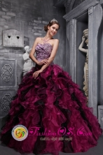 Leopord and Deaded In Acahay Paraguay  Decorate Bodice Ruffles Wild Fushsia Quinceanera Dress Custom Made for Quinceanera Style ZYLJ01FOR