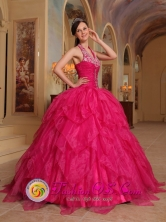 Romantic 2013 Quinceanera Embroidery Hot Pink Dress For Winter Halter Organza Ball Gown In Hernandariaz Paraguay Style QDZY381FOR