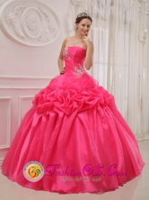 Ruched and Beading For 2013 Popular Hot Pink Quinceanera Dress With Taffeta and organza In nemby Paraguay Style QDZY394FOR