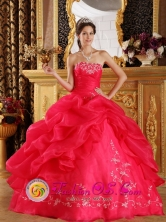 Strapless Embeoidery Wholesale Decorate 2013 New Arrival Coral Red Sweet 16 Quinceanera Dress In Hohenhau Paraguay Style QDZY043FOR