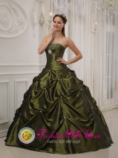 2013 Exquisite Olive Green Quinceanera Dress With Deaded Decorate taffeta For Sweet 16 Quinceaners IN  Laguna de Wounta Nicaragua  Style QDZY358FOR