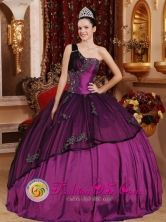 Custom Made One Shoulder Purple Appliques Bodice For Fall Modest Quinceanera Dress IN  Managua Capital Nicaragua  Style QDZYFOR