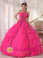 Hot Pink Paillette and applique For 2013 Quinceanera Dress With Sweetheart Organza tiered skirt  in   Karawala Nicaragua  Style PDZY480FOR