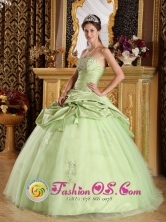 Luxurious Yellow Green For 2013 Quinceanera Dress With Beading Ruching in   Puerto Arturo Nicaragua  Style QDZY193FOR