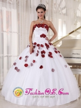 2013 Asuncion Mita Guatemala For Formal Evening White and Wine Red Quinceanera Dress Tulle Beading and Hand Made Flowers Decorate Ball Gown Style PDZY671FOR