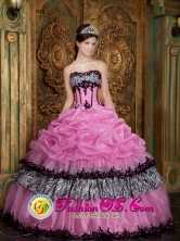 2013 Cariacica Brazil Customer Made Rose Pink Elegant Zebra and Organza Picks-Up Quinceanera Dress Wear For Sweet 16 Style QDZY028FOR