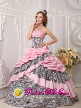 2013 Fortaleza Brazil Pink Quinceanera Dress Taffeta and Zebra For Sweet 16 With Pick-ups Beading Ball Gown Style QDZY017FOR