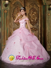 2013 Goiania Brazil Romantic Pink Off The Shoulder Organza Quinceanera Dress With Colorful Flowers in Spring Style QDZY220FOR