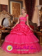 2013 Puerto Barrios Guatemala Custom Made One Shoulder Organza Romantic Hot Pink Beading and Pick-ups Quinceanera Dresses In Autumn Style QDZY755FOR