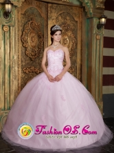 2013 Rio Branco Brazil Lovely Baby Pink  Quinceanera Dress With Appliques Decorate For Summer Style QDZY151FOR