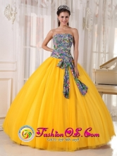 2013 Sao Paulo Brazil For Formal Evening Golden Yellow and Printing Quinceanera Dress Bowknot Tulle Ball Gown Style PDZY713FOR