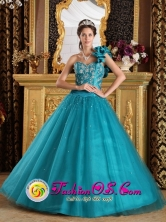 2013 Taubate Brazil Stunning Turquoise One Shoulder Tulle Beaded Decorate Quinceanera Gowns Style QDZY202FOR
