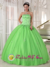 2013 Rancagua Chile Spring Green Appliques Decorate Quinceanera Dress With Strapless Taffeta and Tulle Ball Gown Style PDZY596FOR