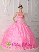 Appliques Decorate Bodice Rose Pink Quinceanera Dress For 2013 Floor-length and Strapless For 2013 in Taltal Chile Style QDZY279FOR