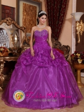 Fall Gorgeous Eggplant Purple 2013 New Arrival Sweetheart Beaded Quinceanera Dress in Caldera Chile Style QDZY626FOR
