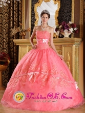 Mulchen Chile Appliques and Bowknots For The Super Hot 2013 Watermelon Strapless Quinceanera Dress Style QDZY099FOR