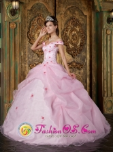 Nacimiento Chile Romantic Pink Off The Shoulder Organza Quinceanera Dress With Colorful Flowers in Spring Style QDZY220FOR