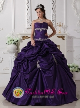 Puren Chile Wear The Super Hot Purple Exquisite Appliques Decorate Quinceanera Dress In 2013 Quinceanera Style QDZY610FOR