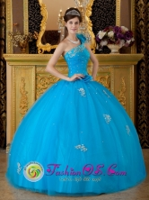 Requinoa Chile Floral One Shoulder Quinceanera Dress Teal Tulle Appliques Ball Gown For Winter Style QDZY166FOR