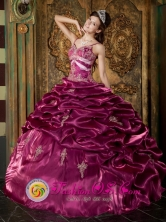 Rio Negro Chile Beading Exquisite Burgundy Straps Taffeta Ball Gown 2013 Quinceanera Style QDZY264FOR