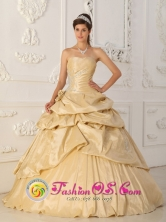 San Vicente de Taguatagua Chile Princess Champagne  2013 Strapless Quinceanera Dress Pick-ups Beading and Hand Made Flowers Decorate Style QDZY176FOR