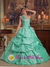 2013 San Alberto Colombia Apple Green One Shoulder Pick-ups Elegant Spring Quinceanera Dress With Hand Flowers Taffeta Style QDZY473FOR