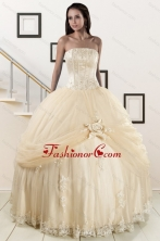 Custom Made Appliques and Hand Made Flower Champagne Quince Dresses XFNAO121FOR