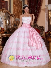 Embroidery Decorate Bodice Pretty Light Pink Stylish Quinceanera Ball Gown Dress For 2013 San Carlos Colombia Spaghetti Straps Organza Ball Gown Style QDZY528FOR