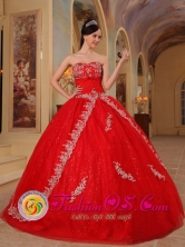 Hatonuevo Colombia  Customize Appliques Decorate Bodice Red Ball Gown Floor-length Sweetheart Wholesale Quinceanera Dress For Military Ball Style QDZY224FOR