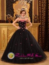 Popular Black Quinceanera Dress For 2013 Los Santos Colombia Wholesale Tiny Flowers Decorate Strapless Tulle Ball Gown  Style QDZY165FOR