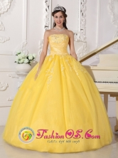 Summer Remarkable Customize Light Yellow Lace and Ruch 2013 Clemencia Colombia Wholesale Quinceanera Gown With Strapless For Sweet 16 Style QDZY594FOR