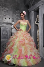 Teorama Colombia Waving tucks strapless Flower Decorate Multi-color For Sweet 16 Dress In 2013 Wholesale Quinceanera  Style ZYLJ07FOR