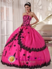 Toro Colombia Perfect Hot Pink Wholesale Quinceanera Dress Organza and Taffeta Appliques Decorate Bodice For 2013 Strapless Ball Gown Style PDZY498FOR