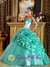 With Hand Made Flower Sweetheart Discount Turquoise Quinceanera Dress In 2013 Oiba Colombia Wholesale Quinceanera Spring Party  Style QDZY236FOR