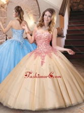 Classical Big Puffy Champagne Quinceanera Dress with Appliques and Beading XFQD1050FOR