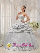 El Uvito Panama Silver For Brand New Quinceanera Dress With Appliques and Pick-ups For Spring In Florida Style QDZY357FOR