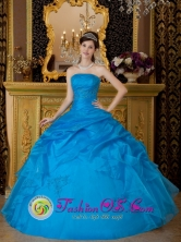 Herrera Panama Simple Sky Blue Strapless Appliques Organza Ball Gown for 2013 Quinceanera Style QDZY072FOR